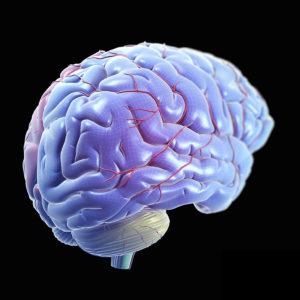Допплер среднемозговой артерии с расчетом риска гемолитической болезни